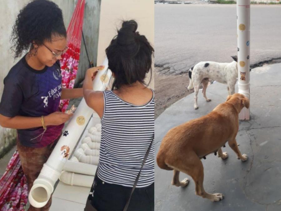Grupo de voluntários distribui comedouros para cães e gatos abandonados de Parintins